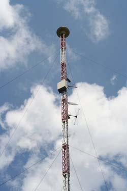 телефонная база города борисоглебск